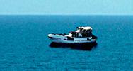 Mar Gómez publica Cifras